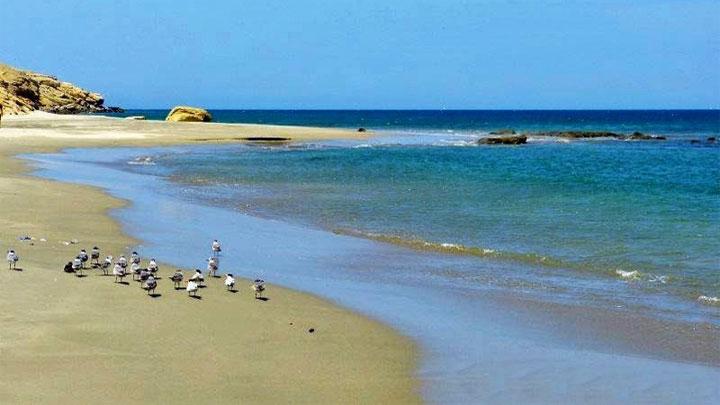 Las hermosas playas y seductoras caletas de Casma 1