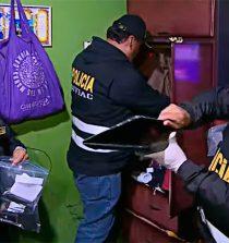 Chimbote: cae red criminal dedicada al tráfico de terrenos, usurpación agravada, extorsión y sicariato. 14