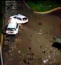 Tacna: 4 fallecidos y 800 afectados tras paso de huaicos