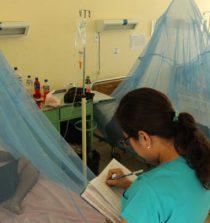 Dengue: Minsa confirma 11 casos en el Cono Norte de Lima