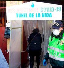 Contraloría alerta que túneles desinfectantes podrían generar riesgo en la salud